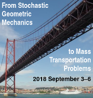[From Stochastic Geometric Mechanics to Mass Transportation Problems · 2018 September 3-6]